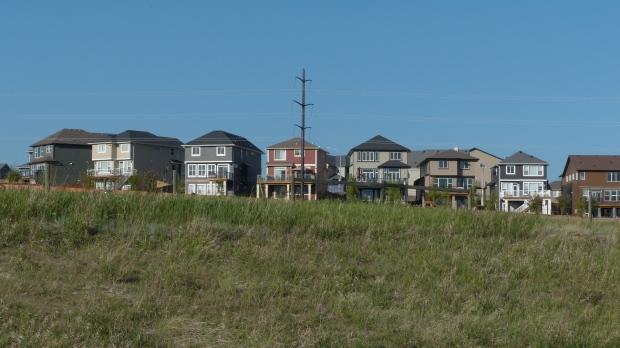 Die neuen Häuser von Cochrane sehen aus wie aus Legoland.