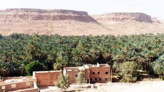 Oase Oued Ziz